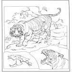 Dyre-malesider - Tiger 3