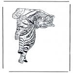Dyre-malesider - Tiger