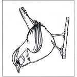 Dyre-malesider - Wren