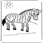 Dyre-malesider - Zebra